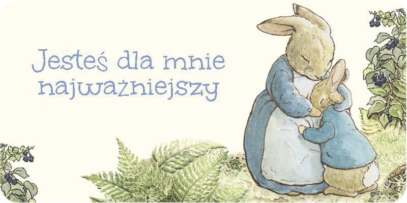 Peter-Rabbit4